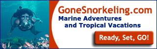 GoneSnorkeling.com